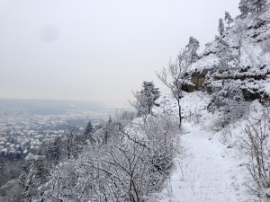 KB-Horizontale Winter
